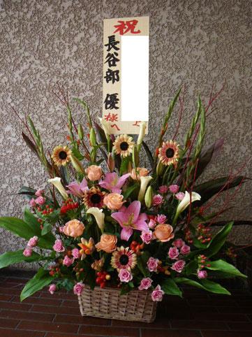 himawari-kayoko