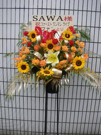 sawasamahimawari