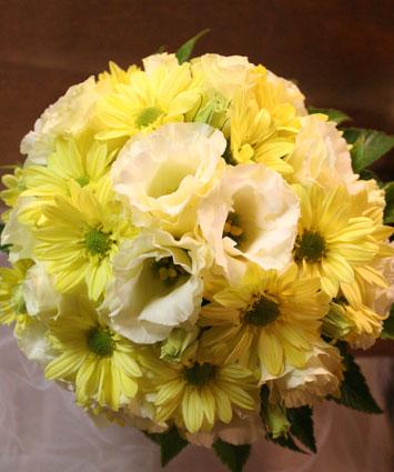 ゆみこさん 黄色