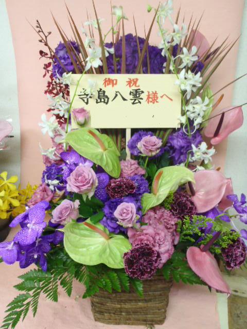 ジュン 紫