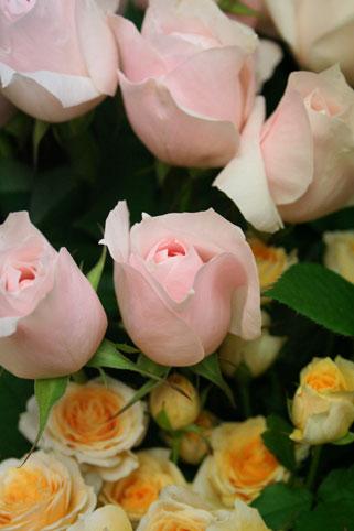 スタンド花 花束 花ギフト 花を贈る フラワーギフト 誕生日花yuka