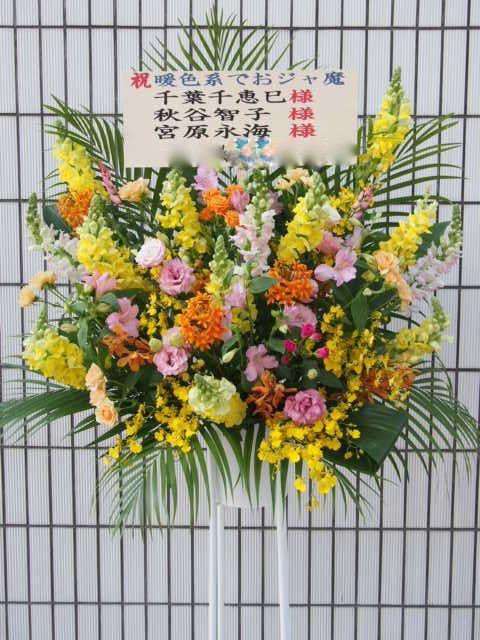 アンコール渋谷30756