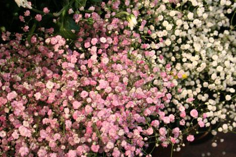 スタンド花 花束 花ギフト 花を贈る フラワーギフト 誕生日花ぴんくかすみ