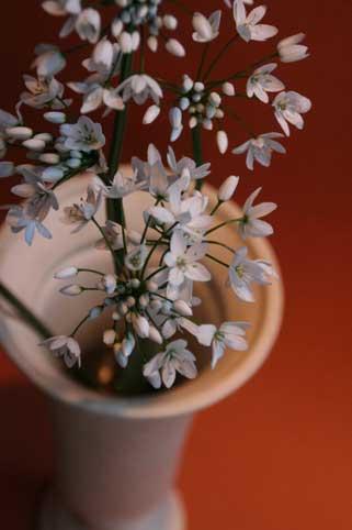 スタンド花 花束 花ギフト 花を贈る フラワーギフト 誕生日花コワニー