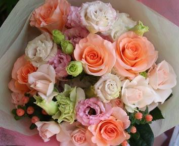 2012spring_b_rose