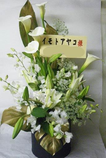 toshi-imotosama