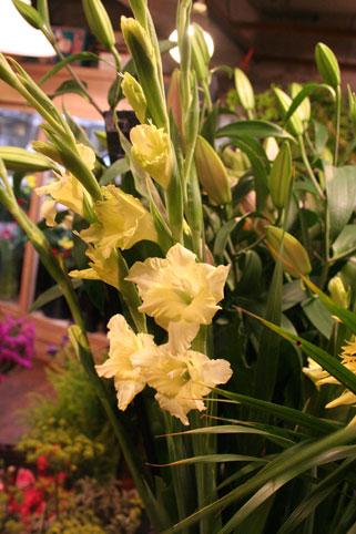 スタンド花 花束 花ギフト 花を贈る フラワーギフト 誕生日花ぶる