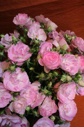 スタンド花 花束 花ギフト 花を贈る フラワーギフト 誕生日花愛子さん