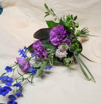 ijichisan-blue