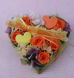 pri_or_heart