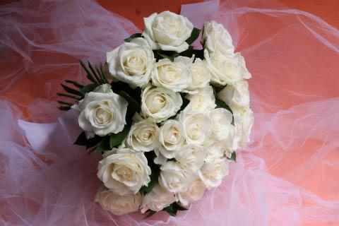 椿山荘 白バラ
