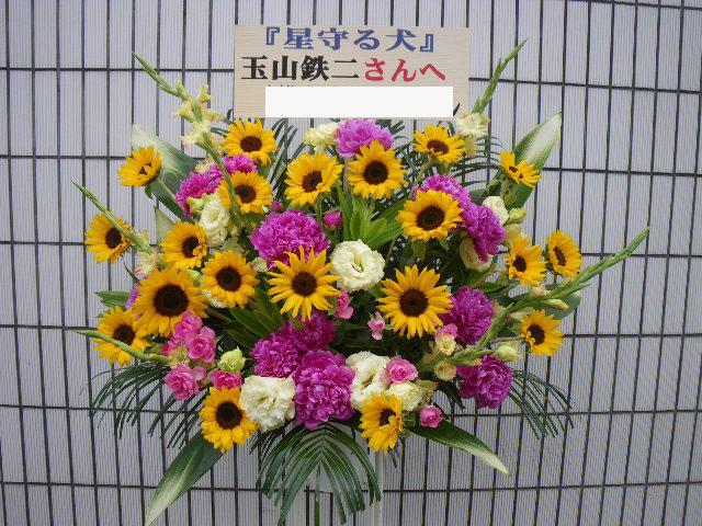 himawari16246